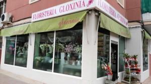 floristeria-gloxinia-adene-socios