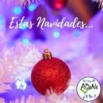 adene-navidad-2018-5
