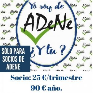 Presentación portal Adene(16)